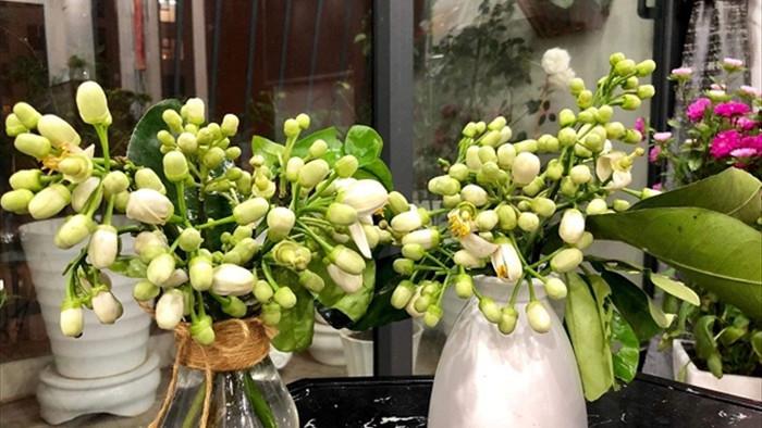 Đón rằm tháng Giêng, người Hà Nội lại tấp nập mua hoa bưởi - 2
