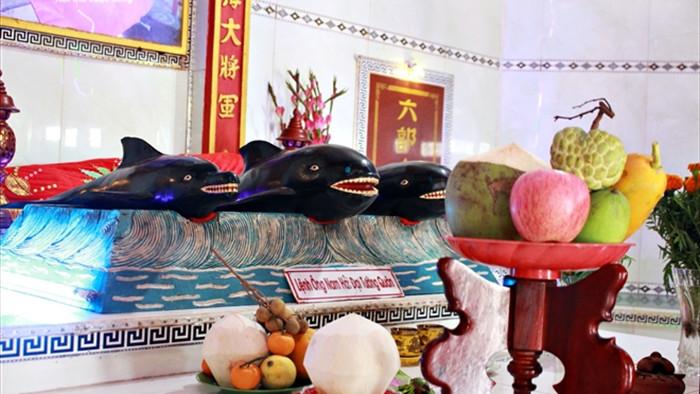 Ảnh: Nghĩa địa cá voi độc nhất Việt Nam - 6