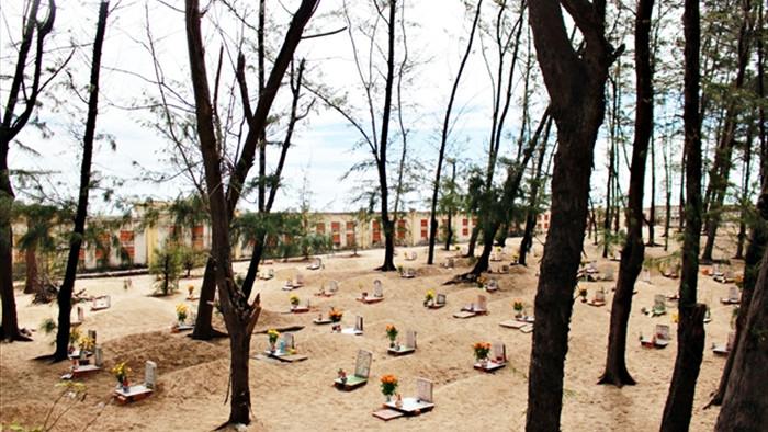 Ảnh: Nghĩa địa cá voi độc nhất Việt Nam - 2