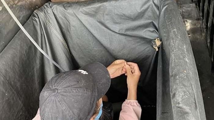 Trốn trong thùng xe né chốt kiểm dịch, 3 người bị phạt 60 triệu đồng - 1