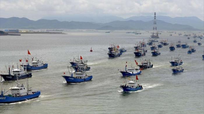 Báo cáo: Hoạt động bành trướng của Trung Quốc đe dọa hệ sinh thái Biển Đông - 1