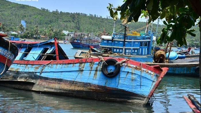 Luồng lạch bị bồi lấp, tàu của ngư dân 'chôn chân' tại cảng Sa Huỳnh - 2