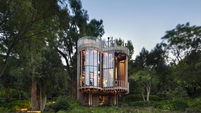 Dinh thự phong cách safari sang trọng giữa rừng cây ở Nam Phi - 1