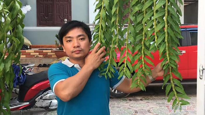 Công an vào cuộc vụ bán lan hồng bồng lai 1,6 tỷ đồng ở Nghệ An
