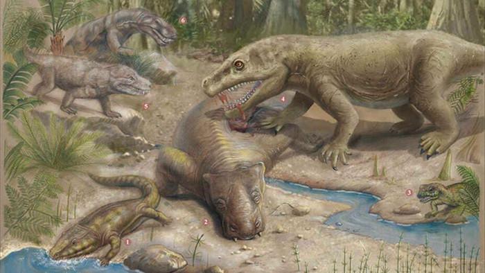 Sự sống trên Trái đất phục hồi như thế nào sau sự kiện Đại tuyệt chủng? - 1