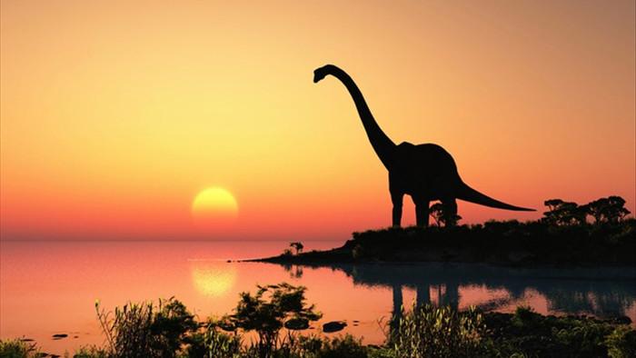Tiểu hành tinh hủy diệt khủng long đã mang lại cho Trái đất hệ thực vật mới - 1
