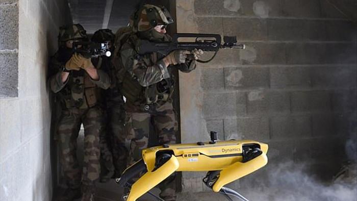 Quân đội Pháp ôm mộng số hóa chiến trường với siêu khuyển robot - 1