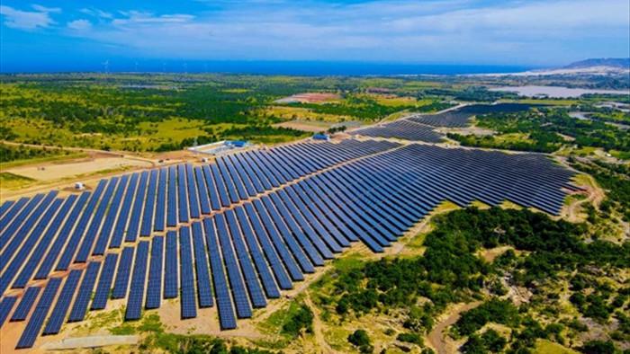 Doanh nghiệp điện mặt trời kêu cứu vì bị cắt giảm công suất - 1