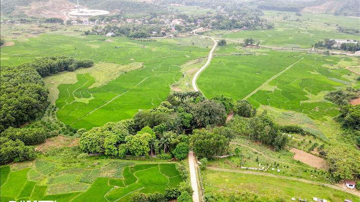 Tận mắt thấy cây ma làng tồn tại hơn 8 thế kỷ ở Hòa Bình - 1