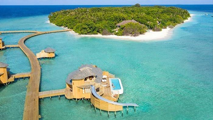 Nhà giàu Ấn Độ chi bộn tiền du lịch Maldives trốn sóng thần Covid-19 - 1