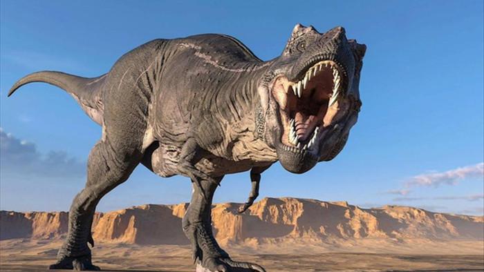 Lực cắn ngàn cân của khủng long bạo chúa đáng sợ cỡ nào? - 3
