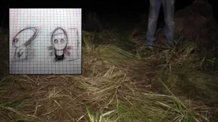 Phác họa chân dung người ngoài hành tinh dựa trên các chứng cứ thuyết phục - 1