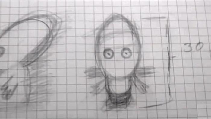 Phác họa chân dung người ngoài hành tinh dựa trên các chứng cứ thuyết phục - 2