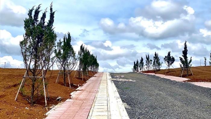 Không cần lập dự án, quả đồi 36ha ở Lâm Đồng bị xẻ thành 1.000 nền đất để bán - 6