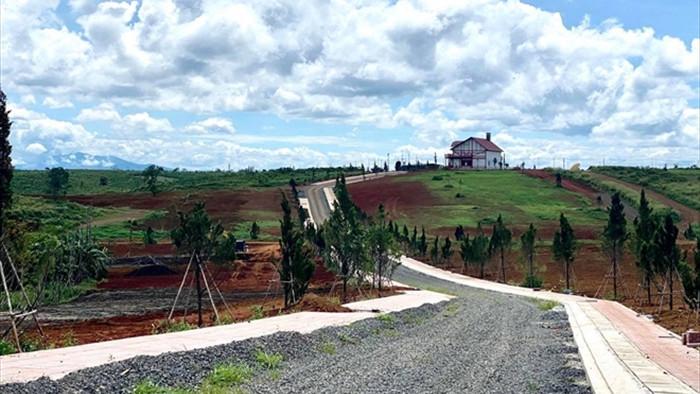 Không cần lập dự án, quả đồi 36ha ở Lâm Đồng bị xẻ thành 1.000 nền đất để bán - 5