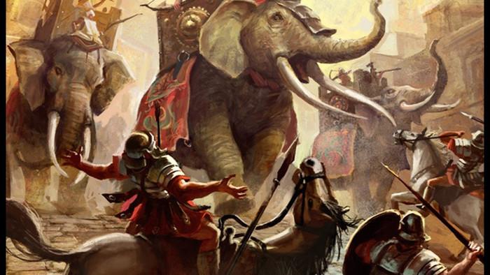 Trâu rừng xấu số gặp voi điên và cái kết dành cho kẻ mạnh - 2