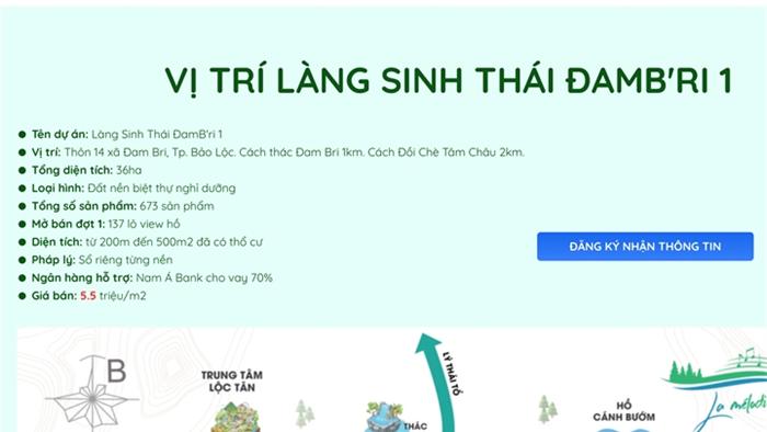 Xẻ đồi thành 1.000 đất nền để bán: Nhiều chỉ đạo quyết liệt ở Lâm Đồng - 3