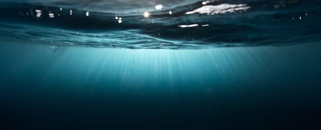 Bí ẩn vùng chết chóc dưới đại dương-2