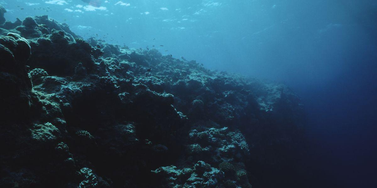 Bí ẩn vùng chết chóc dưới đại dương-1