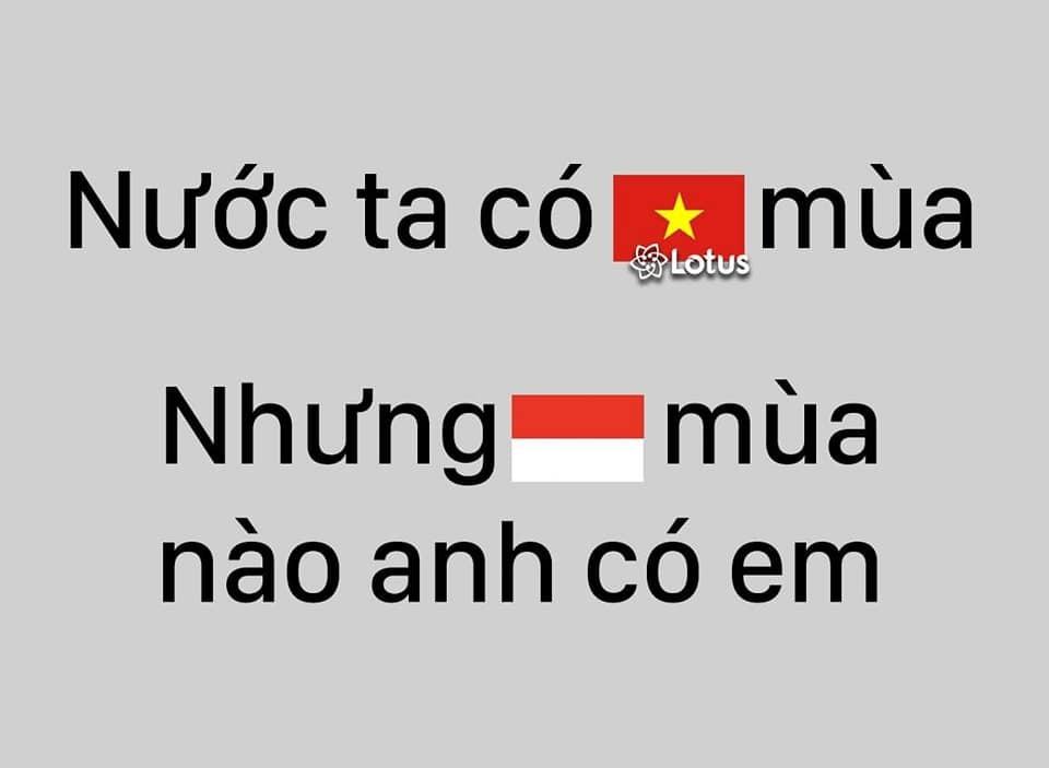 Ngập tràn ảnh chế sau trận thắng của tuyển Việt Nam trước Indonesia-18