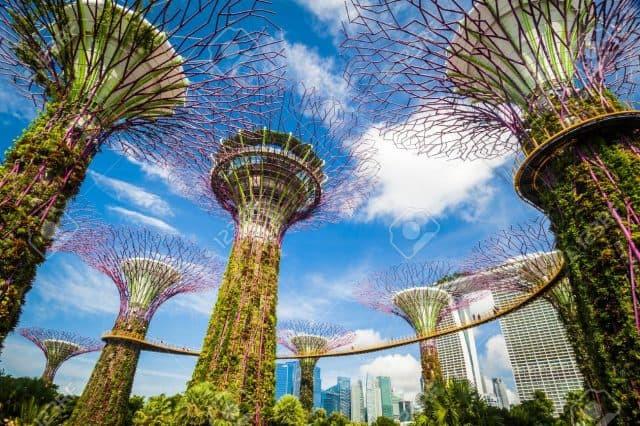 Những lưu ý khi đến Singapore trong mùa dịch COVID 19-3