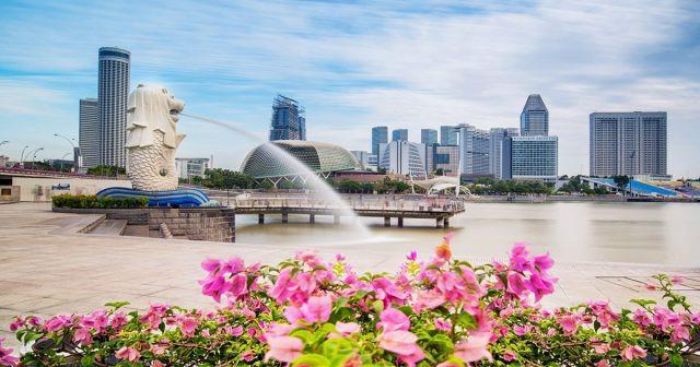 Những lưu ý khi đến Singapore trong mùa dịch COVID 19-1