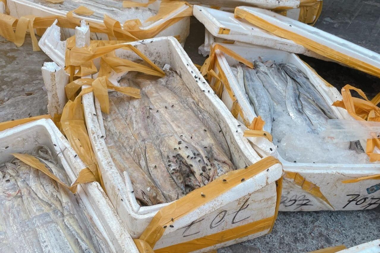 Doanh nghiệp mất tiền tỷ vì không thể xuất khẩu hải sản sang Trung Quốc-4