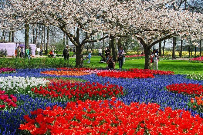 Say đắm với cảnh sắc vườn hoa đẹp nhất Hà Lan-6