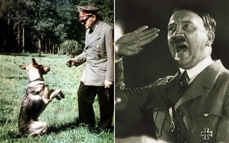 Bí mật về đội quân chó biết nói của Đức Quốc xã-2