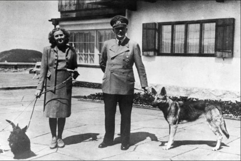 Bí mật về đội quân chó biết nói của Đức Quốc xã-4
