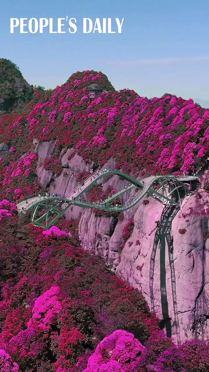Cầu uốn lượn giữa 2 vách núi cao 140 m ở Trung Quốc gây bão mạng xã hội-4