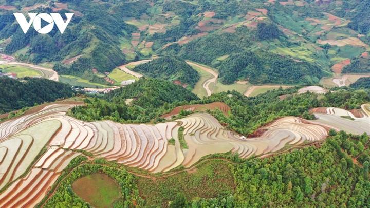 Ảnh: Ruộng bậc thang Mù Cang Chải đẹp lạ lùng mùa nước đổ-7