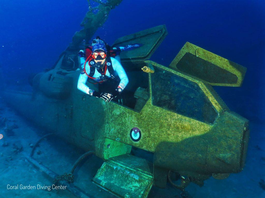 Du khách bơi, lặn ngắm bảo tàng quân sự có một không hai trên thế giới-1
