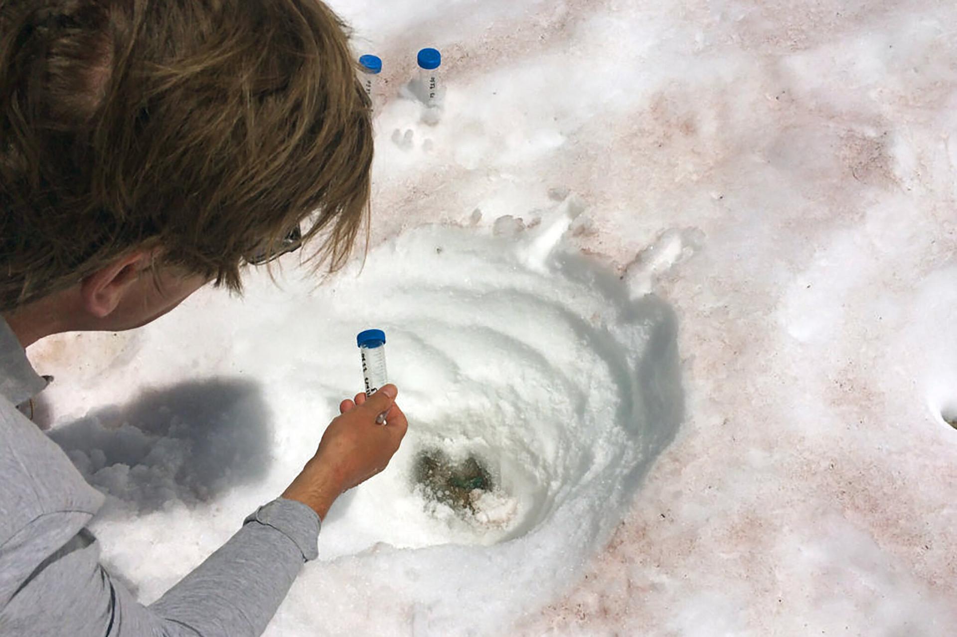 Chảy máu sông băng - hiện tượng đáng báo động đằng sau việc xuất hiện tuyết đỏ trên dãy Alps-2