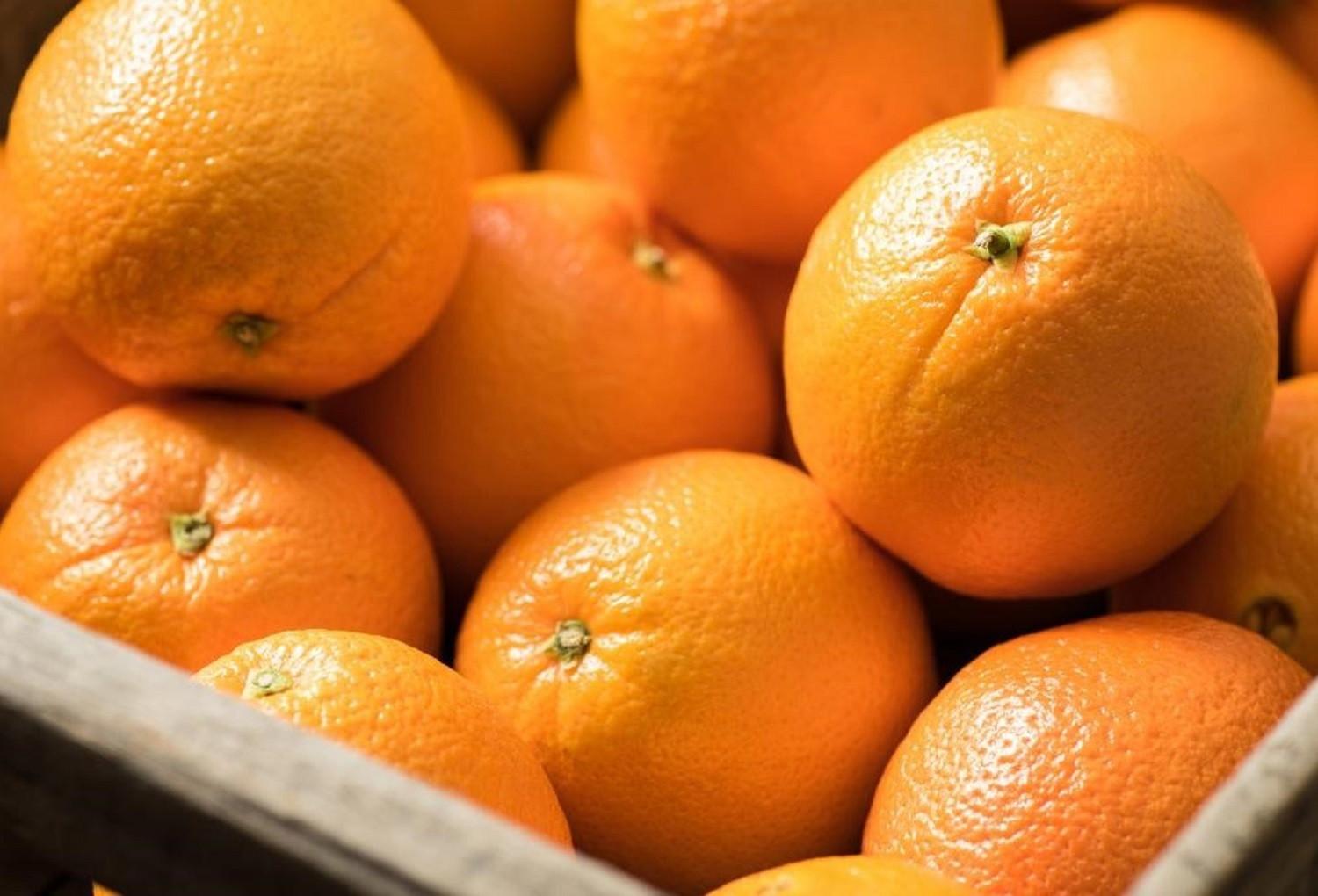 5 loại thực phẩm chuyên gia khuyên dùng để giải nhiệt mùa nóng-2
