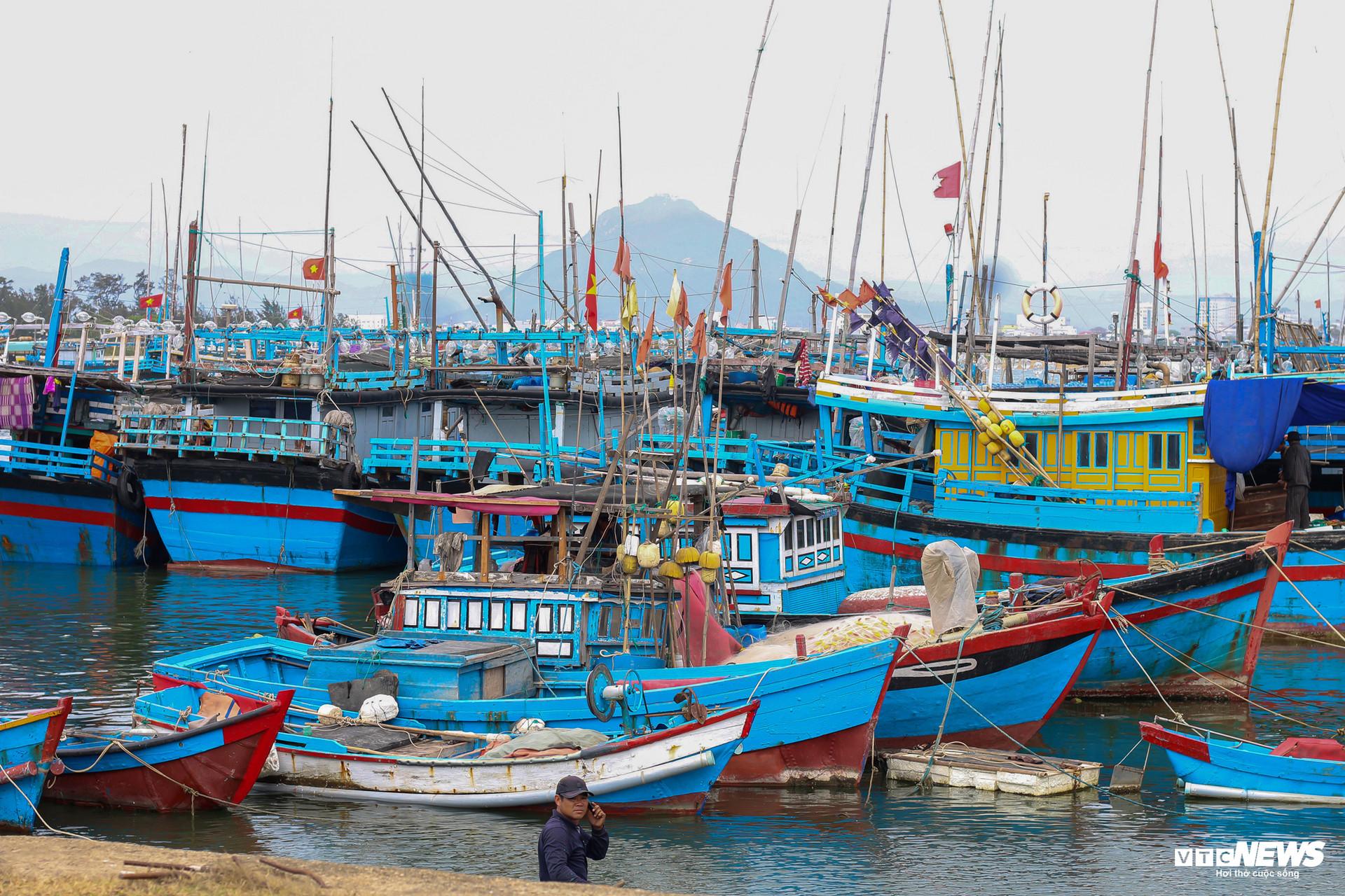 Nỗi buồn của ngư phủ nơi khai sinh nghề câu cá ngừ đại dương ở Việt Nam-6