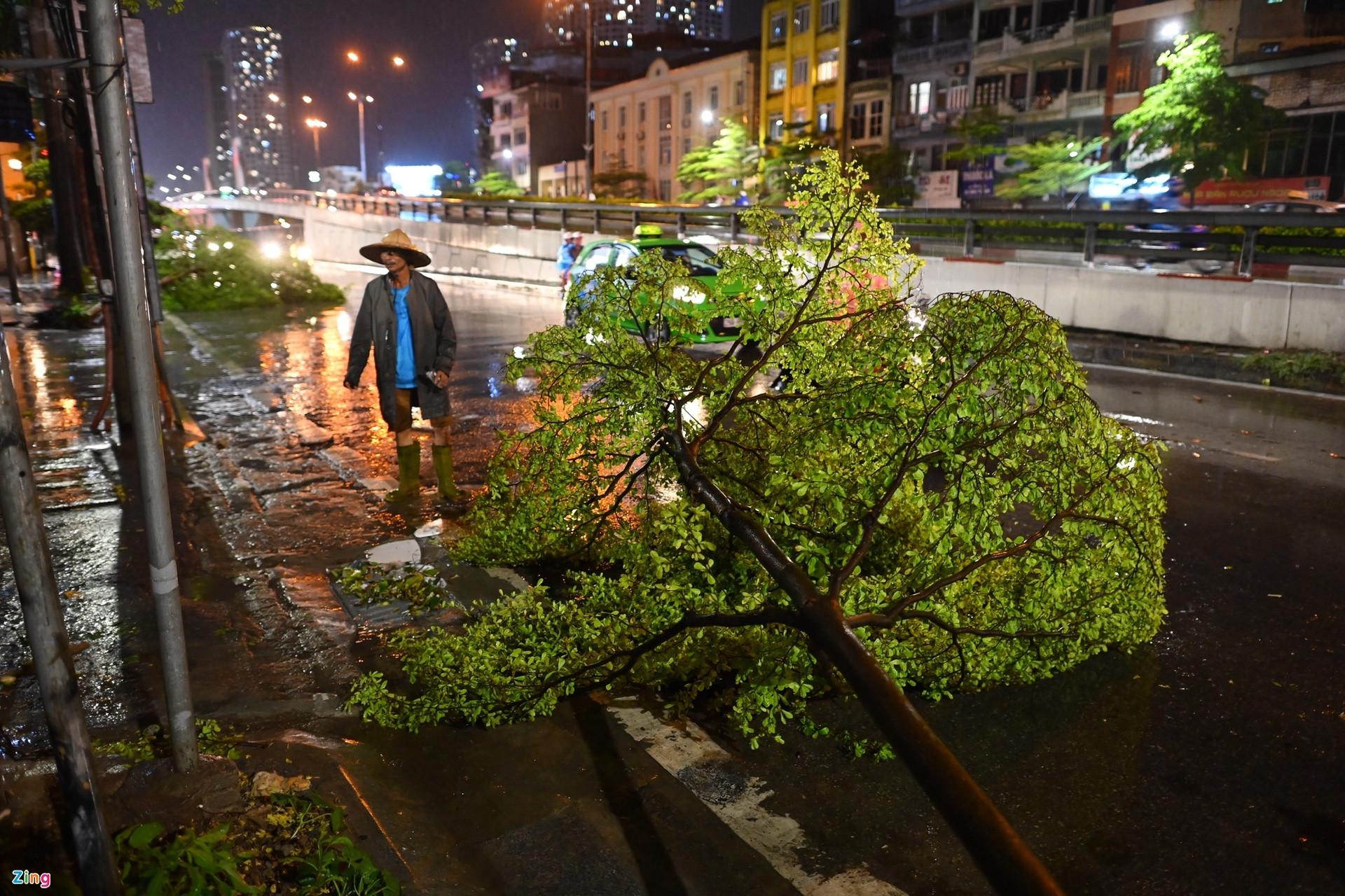 Mưa lớn, cây đổ khắp phố phường Hà Nội-8