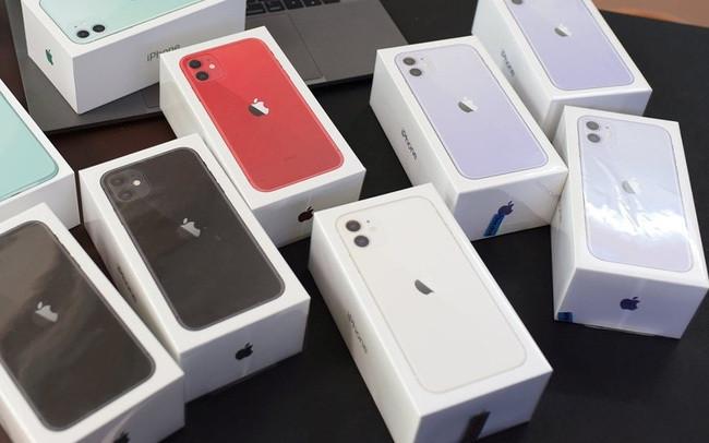 iPhone 11 chính hãng giảm giá mạnh, rẻ hơn máy xách tay-2