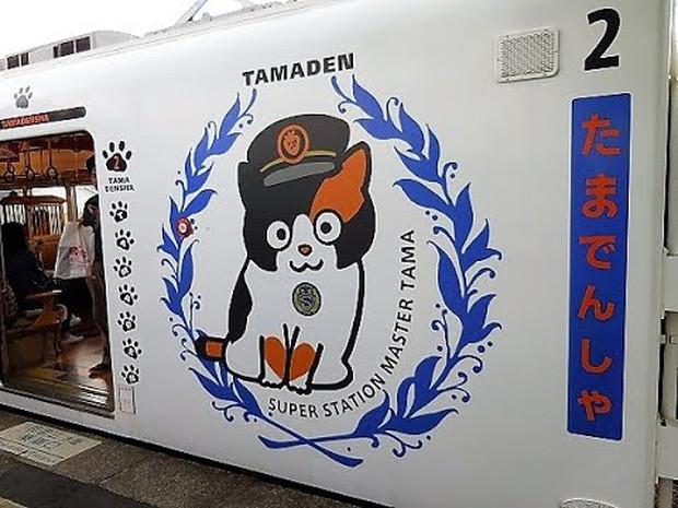 Chỉ nhờ một cô mèo hoang, công ty Nhật Bản lãi to 280 tỷ, thoát khỏi cảnh phá sản trong gang tấc-9