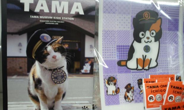 Chỉ nhờ một cô mèo hoang, công ty Nhật Bản lãi to 280 tỷ, thoát khỏi cảnh phá sản trong gang tấc-11