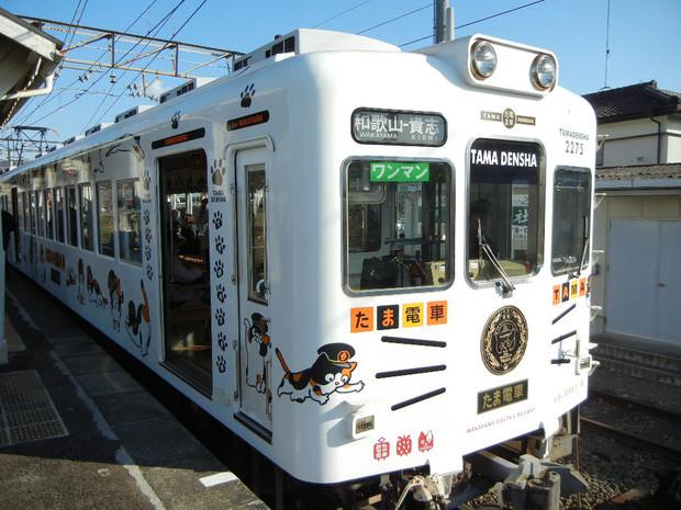 Chỉ nhờ một cô mèo hoang, công ty Nhật Bản lãi to 280 tỷ, thoát khỏi cảnh phá sản trong gang tấc-10