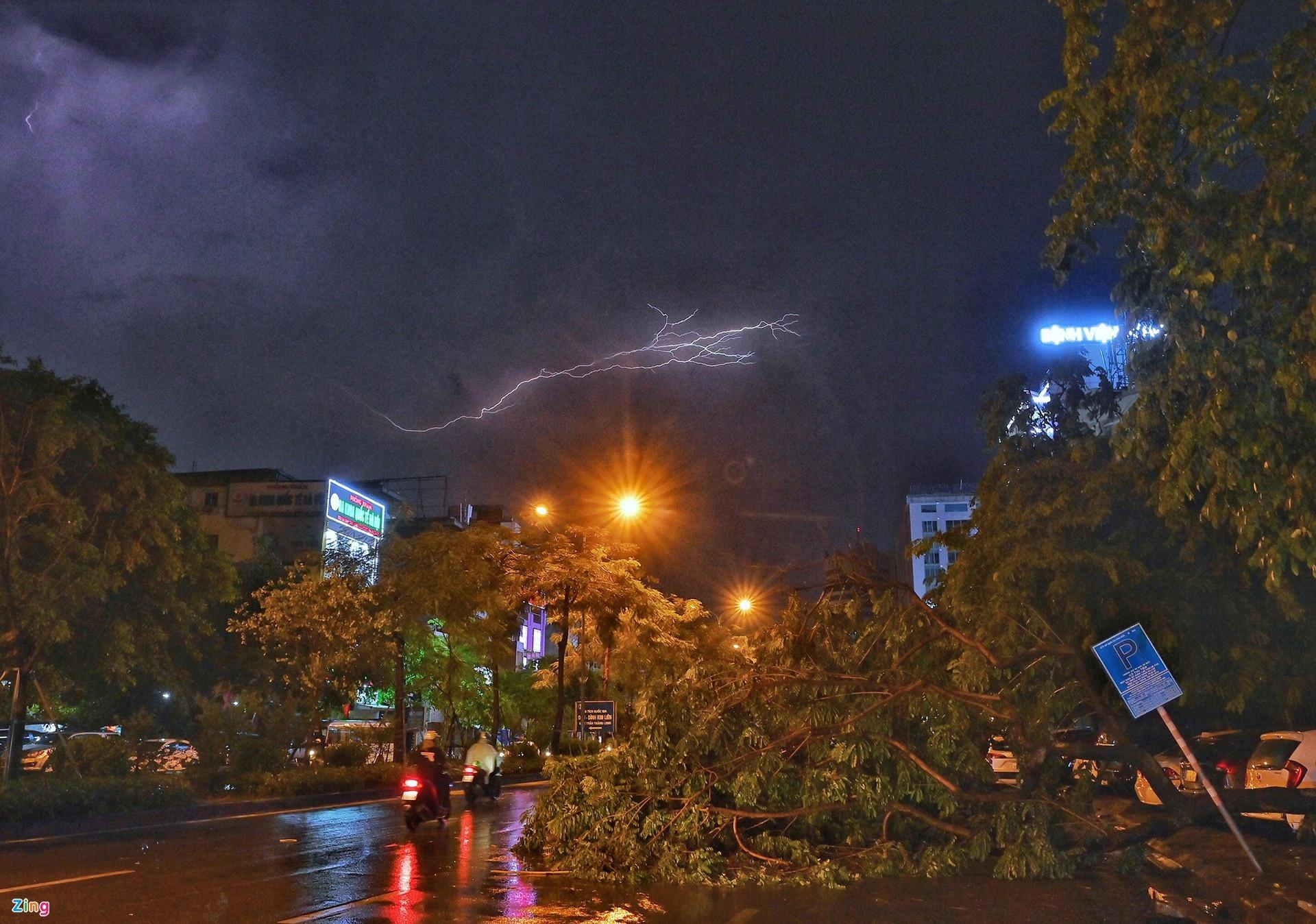 Mưa lớn, cây đổ khắp phố phường Hà Nội-1