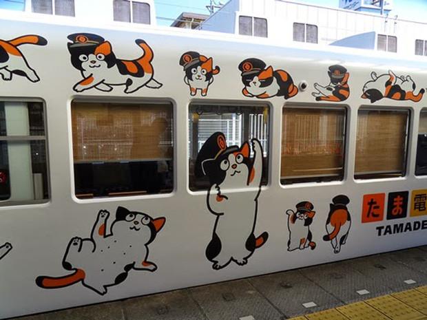 Chỉ nhờ một cô mèo hoang, công ty Nhật Bản lãi to 280 tỷ, thoát khỏi cảnh phá sản trong gang tấc-12