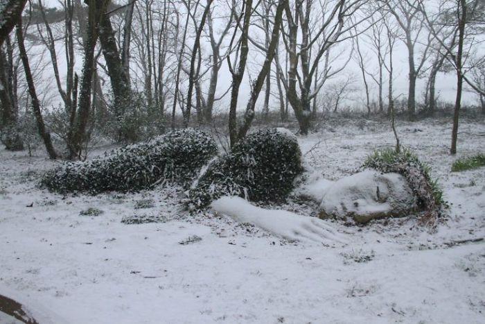 Bí ẩn tượng thiếu nữ nằm ngủ trong rừng, biến đổi theo mùa-3