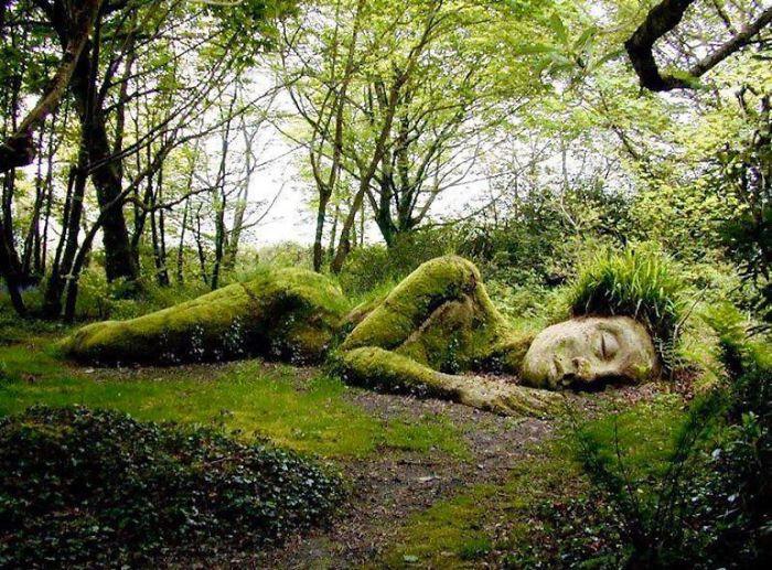 Bí ẩn tượng thiếu nữ nằm ngủ trong rừng, biến đổi theo mùa-1