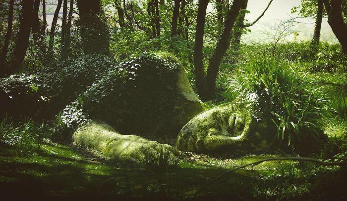 Bí ẩn tượng thiếu nữ nằm ngủ trong rừng, biến đổi theo mùa-5