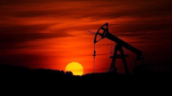 Mùa hè khó lường trước của giá dầu thế giới-1