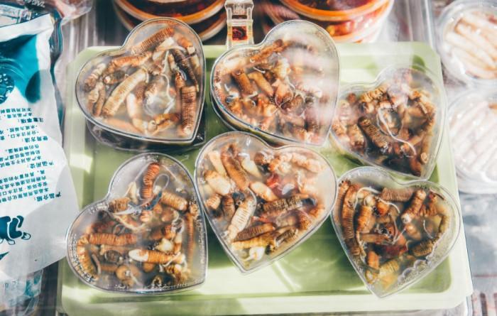 Thạch giun biển, món ăn trông đáng sợ nhưng thử một lần lại dễ nghiện-5