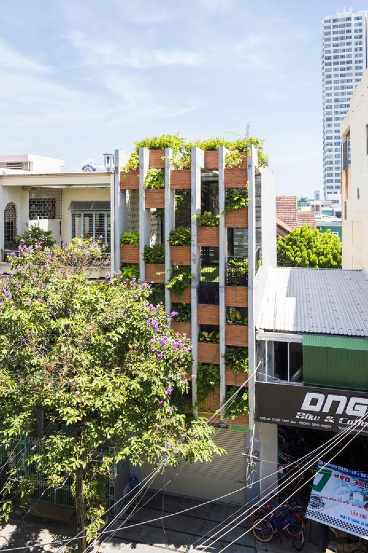 Ngôi nhà nằm ở quận Thanh Khê, TP Đà Nẵng, có diện tích xây dựng 240m2. Công trình có cấu trúc của một ngôi nhà phố có hai mặt thoáng trước và sau, mặt tiền hướng đông, mặt hậu hướng tây. Các kiến trúc sư và chủ nhà đưa ra ý tưởng làm ngôi nhà như nơi nghỉ dưỡng, gần gũi thiên nhiên. Mặt tiền ngôi nhà rất khác lạ với những bồn cây treo lơ lửng giữa những lam bê tông thẳng đứng.