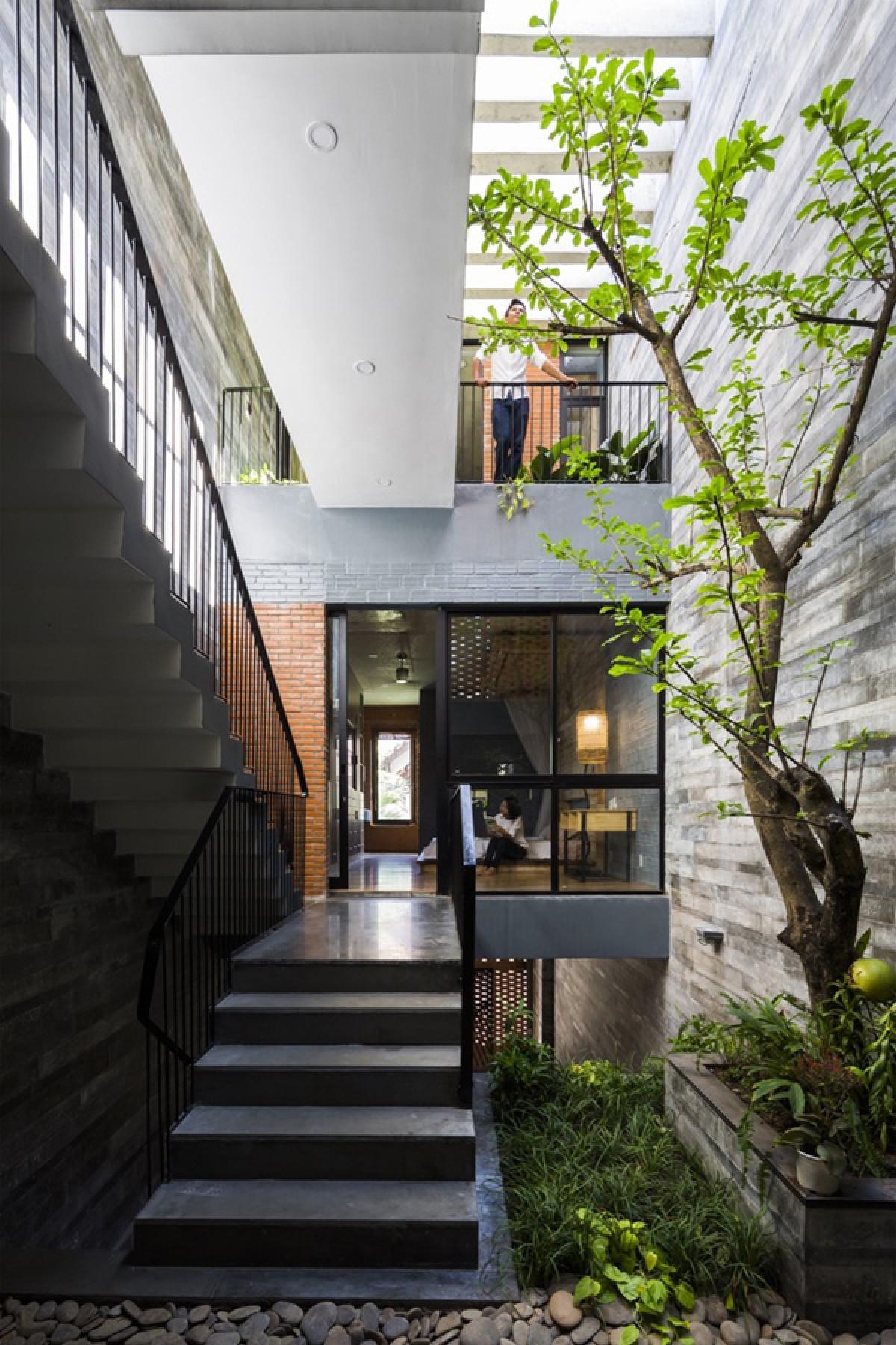 Cầu thang được bố trí bên cạnh giếng trời. Cấu trúc trải dài của cầu thang, hành lang càng làm không gian thêm rộng thoáng.